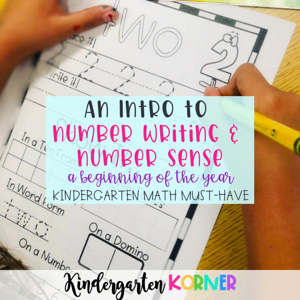 Number Writing Number Sense Books